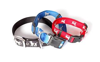 3 Hundehalsbänder