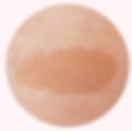 Pigmentation_WEBPAGE.005_edited.png