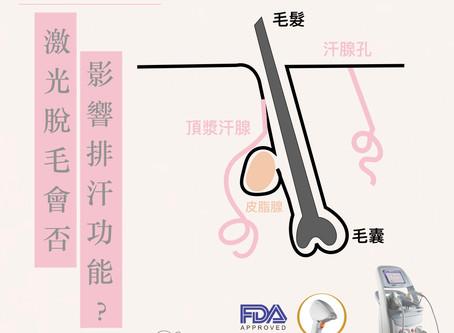 【激光脫毛會否影響排汗功能?】