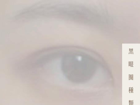 【黑眼圈種類】