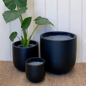 Painted Tulip Pot