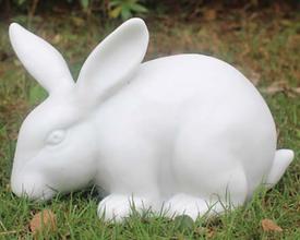 Bella the Rabbit.png