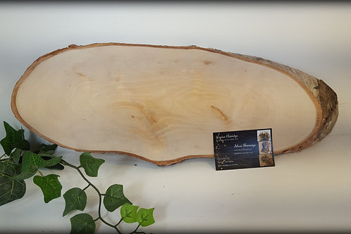 Large Silver Birch Blanks