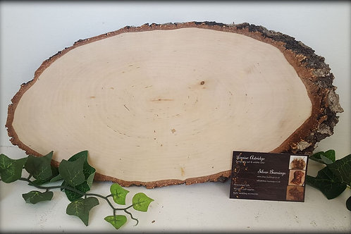 Large Silver Birch Blanks - Rough Bark