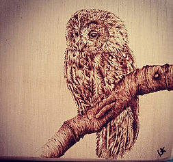 owl%20mini_edited.jpg