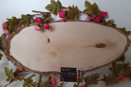 Extra Large Silver Birch Blanks - Rough Bark