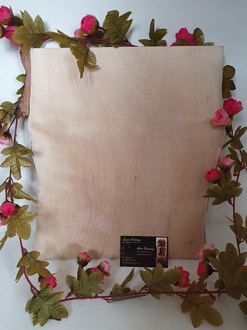 Large Silver Birch Boards NO BARK