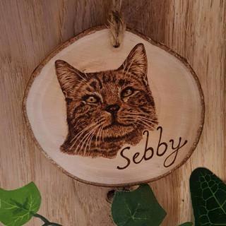 'Sebby' Commission