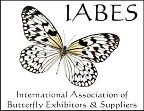 iabes-big-logo.jpg