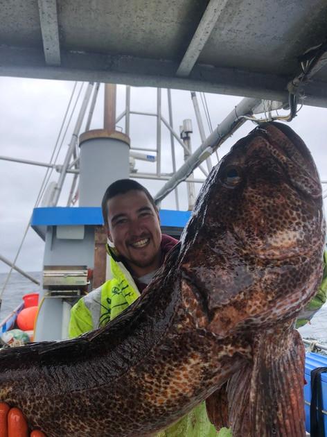 Fisherman holding up large fish