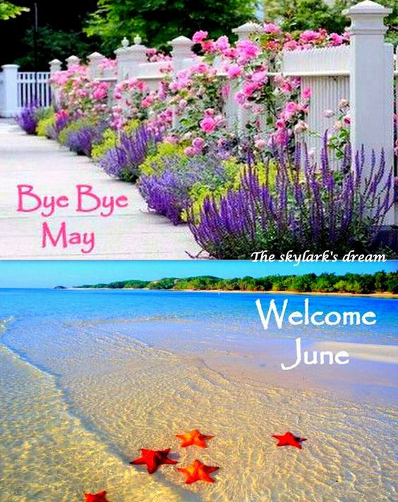 Bye Bye ay Hello June.