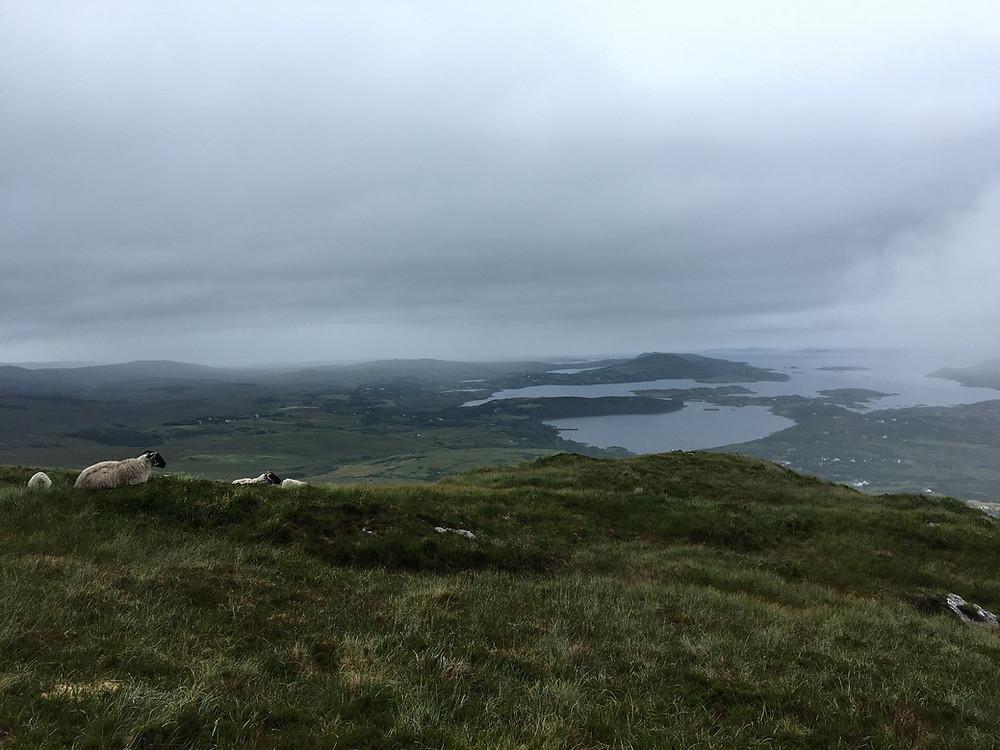 Les collines du Connemara