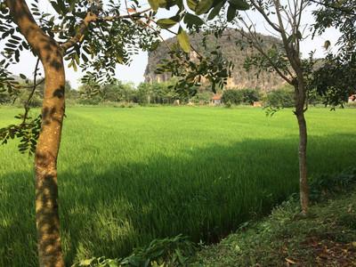 Ballade à Tam Coc - Vietnam