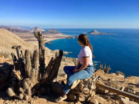 Le coup de cœur de Camille : Pan de Azucar National Parc au Chili