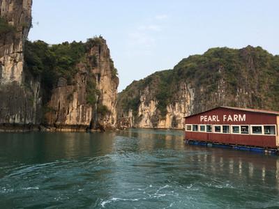 Croisière sur la baie d'Halong - Vietnam