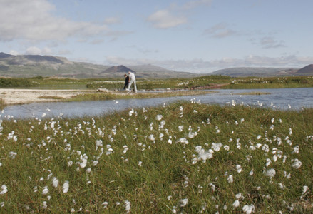 Piscine naturelle en Islande