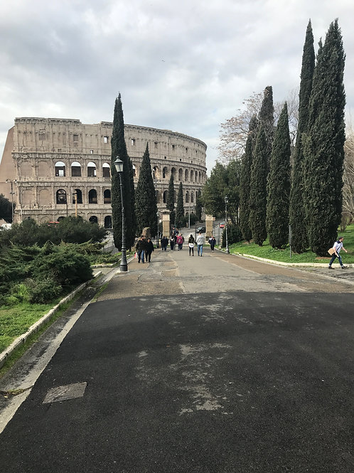 Highlights of Rome From Civitavecchia