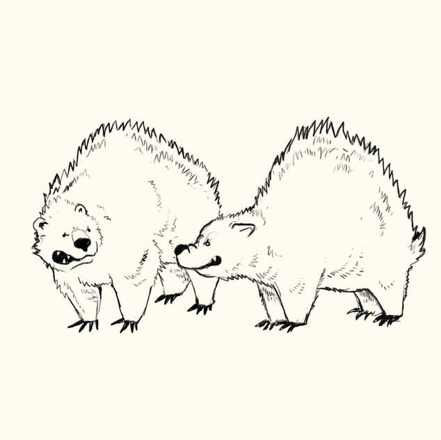 danielle-adams-illustration-bears.jpg