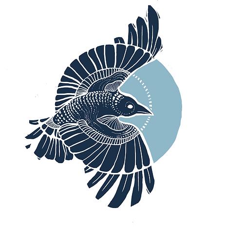 Spot_crow.png