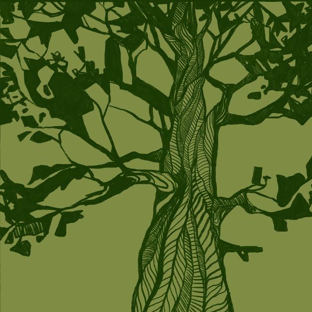 danielle-adams-illustration-big-trees-sq
