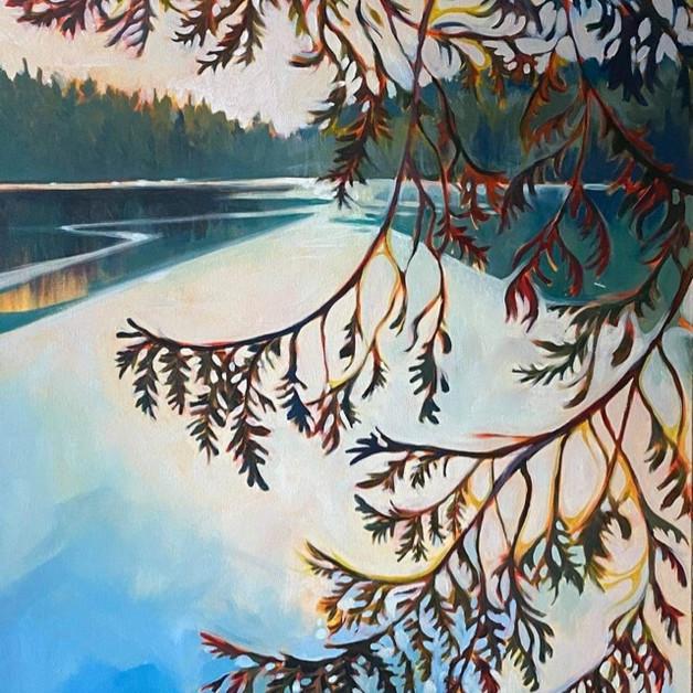 Cedars over Kilarny Lake
