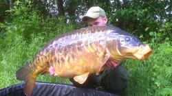 pepite full scaled 22,9kg