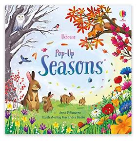 Pop-Up Seasons (Usborne)