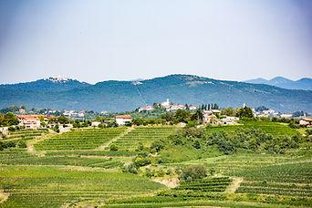 destination-Slovenie-1469.jpg