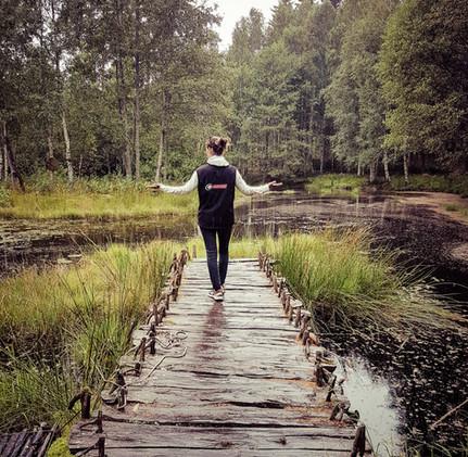 Destination camping-car en Suède : Tanum et ses peintures rupestres