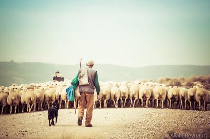 Destination Camping-car en Espagne