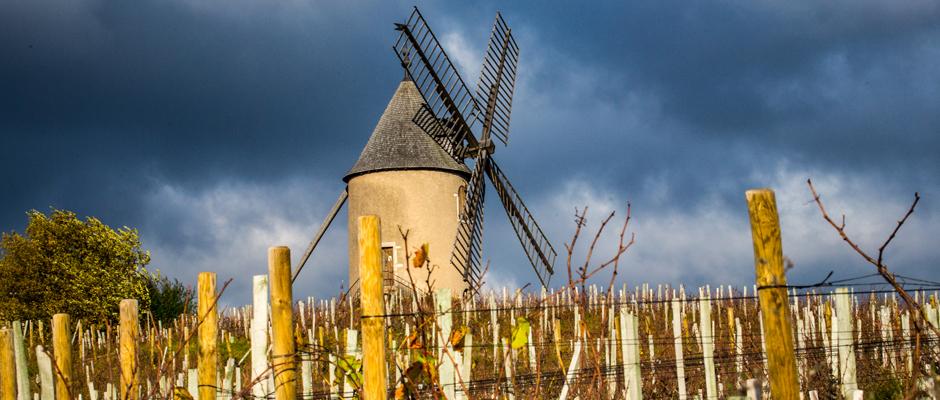 Photo reportage en Beaujolais