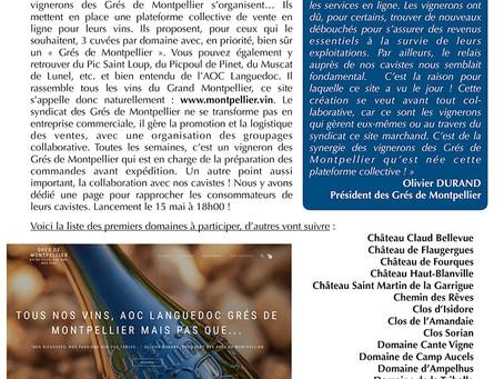 Les Grès de Montpellier lancent leur plateforme de vente en ligne