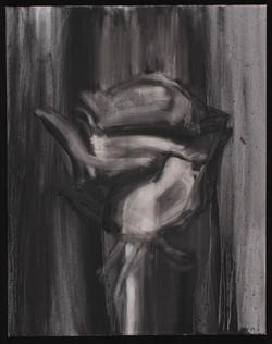 Black Rose #1