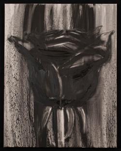 Black Rose #2
