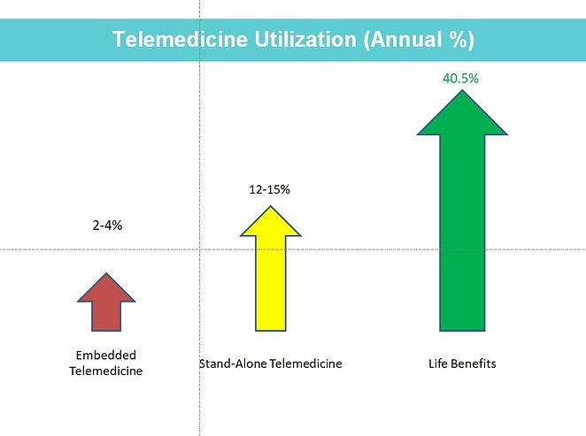 Telemedicine Utilization Slide.JPG