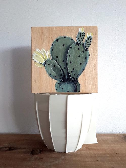 cactus 120 (pot non inclus)