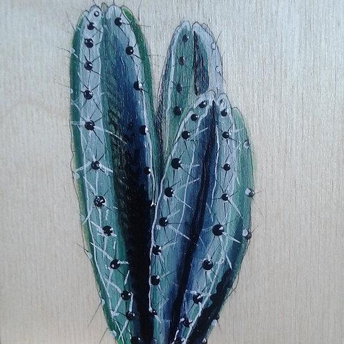 cactus #54