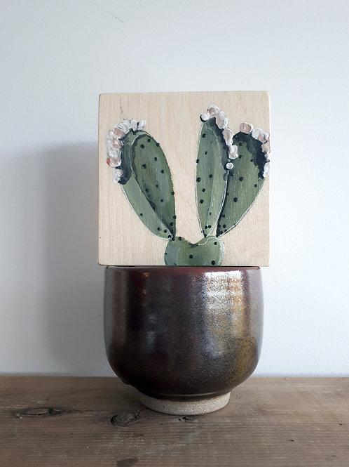 cactus 122 (pot non inclus)