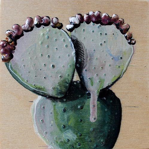 plante #89