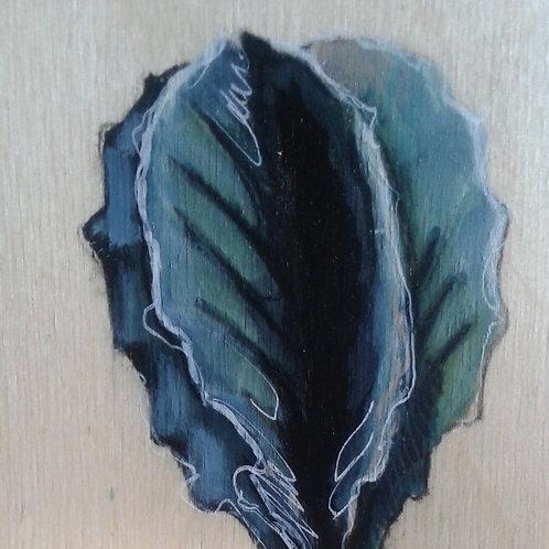 cactus #59