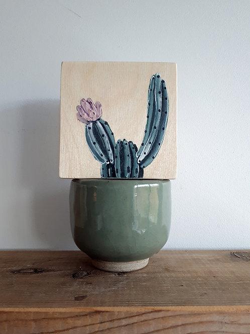cactus 118 (pot non inclus)