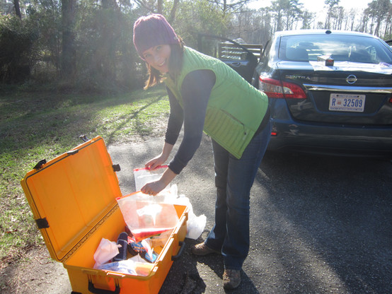 Collecting duck intestines from hunters
