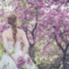 bloom-1850075_1920.jpg