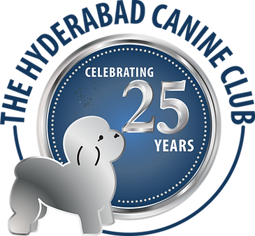 Hycan 25 logo.png