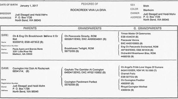 Rockcreek Viva La Diva Pedigree
