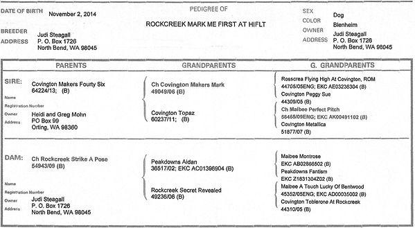 Rockcreek Mark Me First at HIFLT Pedigree