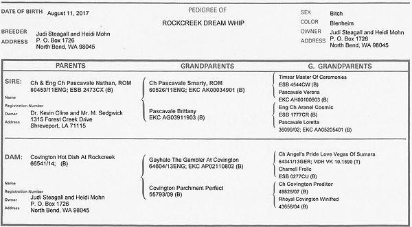 Rockcreek Dream Whip Pedigree