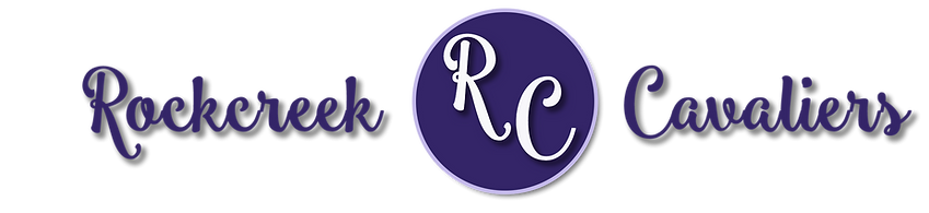 banner with purple center.png
