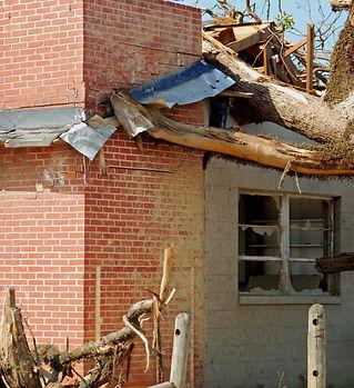 Debris - Tree Fallen on House.jpeg