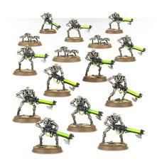 Necron Warriors with Canoptek Scarabs WT